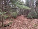 Lot 0 Chippewa Trail - Photo 13