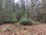 Lot 0 Chippewa Trail - Photo 14