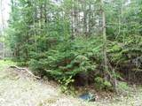 Lot 0 Chippewa Trail - Photo 5