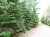 Lot 0 Chippewa Trail - Photo 8