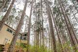 49655 Pease Rd - Photo 8