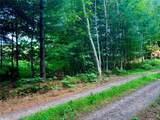 0 Bear Moon Trail - Photo 6