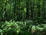 0 Lot 2 Whisper Trail - Photo 4