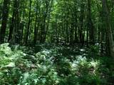 0 Lot 1 Whisper Trail - Photo 7