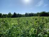 Lot 3 Bear Paw Trail - Photo 1