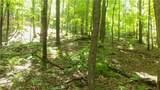 6.58 ACRES Chippewa Trail - Photo 2