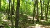 6.58 ACRES Chippewa Trail - Photo 3