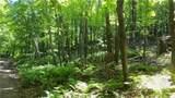 6.58 ACRES Chippewa Trail - Photo 4