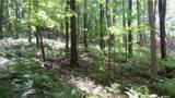 6.58 ACRES Chippewa Trail - Photo 6