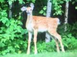 14961W Cherokee Trail - Photo 36
