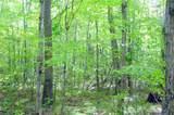 40 Acres on Hwy. 8 - Photo 18