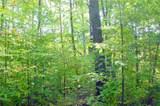40 Acres on Hwy. 8 - Photo 7