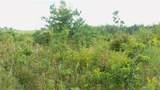 LOT 10 Pine Tree Trl - Photo 4