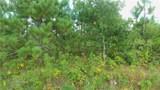 LOT 10 Pine Tree Trl - Photo 7