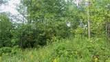 LOT 11 Pine Tree Trl - Photo 9