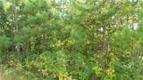 LOT 13 Pine Tree Trl - Photo 4