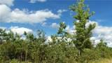 LOT 13 Pine Tree Trl - Photo 5