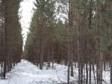 ON Whalen Lake  8223-5A Road - Photo 2