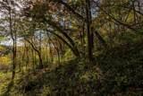 58617 Mississippi Ridge Lane - Photo 5