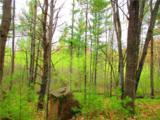 0 Mosquito Brook Road - Photo 21