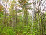 0 Mosquito Brook Road - Photo 7