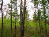 0 Mosquito Brook Road - Photo 3