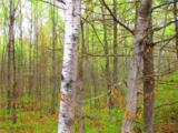 0 Mosquito Brook Road - Photo 9