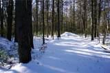 .98 Acres Fawn Lane - Photo 3