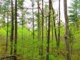 0 Mosquito Brook Road - Photo 17