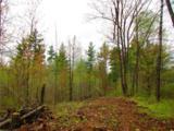 0 Mosquito Brook Road - Photo 2