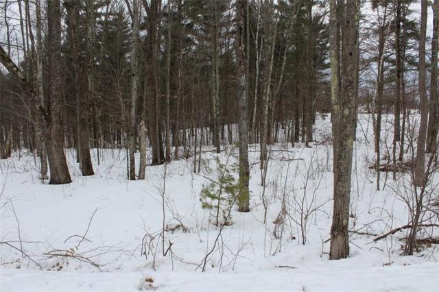 Lot 2 Hidden Woods Dr, Hayward, WI 54843 (MLS #1517131) :: RE/MAX Affiliates