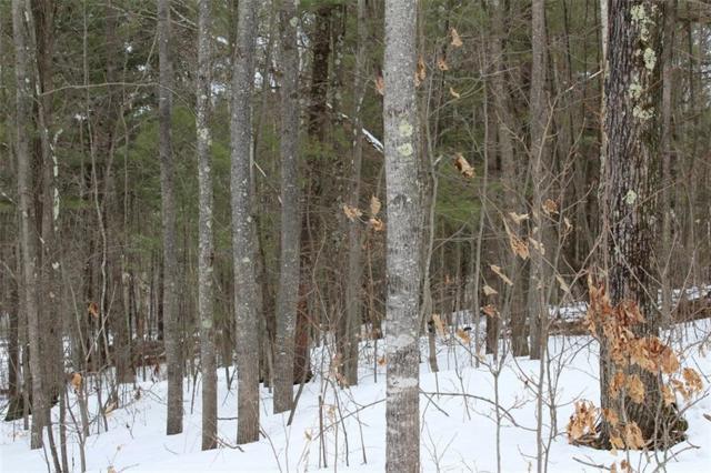 Lot 16 Hidden Woods Dr, Hayward, WI 54843 (MLS #1517144) :: RE/MAX Affiliates