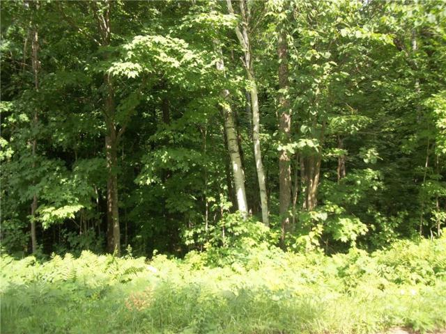 Lot 96 Woods Avenue, Birchwood, WI 54817 (MLS #1521936) :: RE/MAX Affiliates