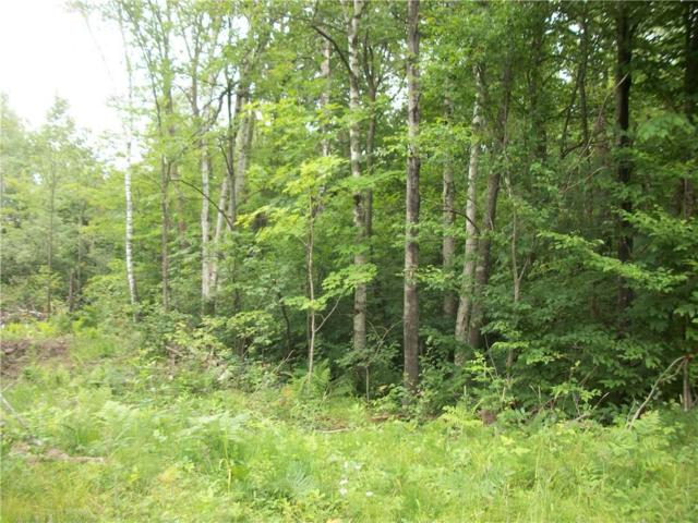 Lot 103 Arcadia Place/30Th  Ave Avenue, Birchwood, WI 54817 (MLS #1521943) :: RE/MAX Affiliates