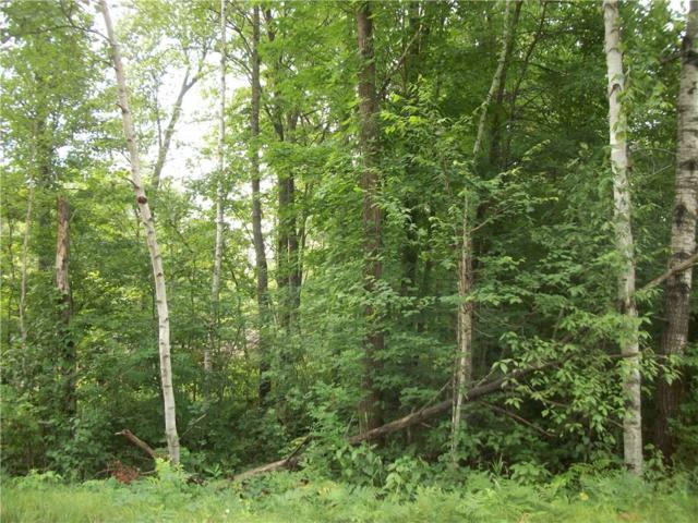 Lot 106 Arcadia Place/30Th  Ave Avenue, Birchwood, WI 54817 (MLS #1521944) :: RE/MAX Affiliates