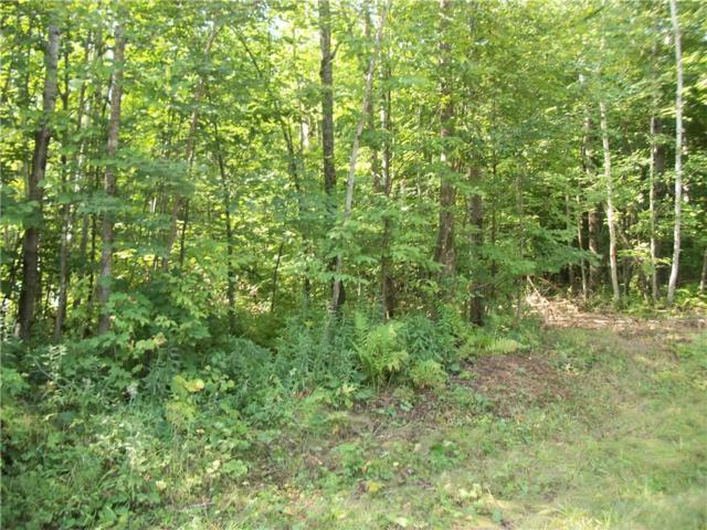 Lot 27 Woods Avenue, Birchwood, WI 54817 (MLS #1523262) :: RE/MAX Affiliates