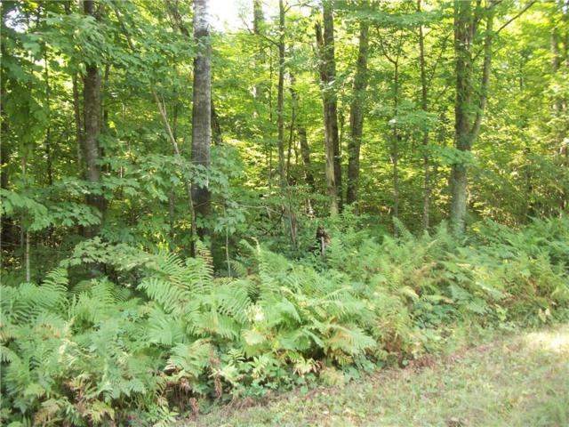 Lot 28 Woods Avenue, Birchwood, WI 54817 (MLS #1523270) :: RE/MAX Affiliates
