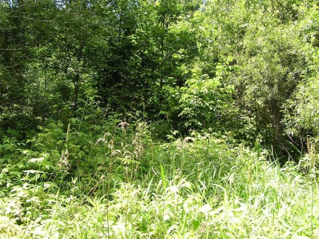 0000 S Parker Road, Ladysmith, WI 54848 (MLS #1525164) :: The Hergenrother Realty Group