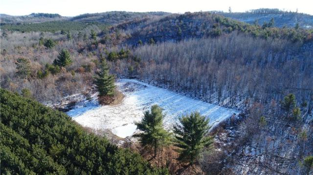 0 Gerth Rd, Fairchild, WI 54741 (MLS #1527054) :: The Hergenrother Realty Group