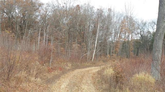 0 County Road Zz, Mondovi, WI 54755 (MLS #1527093) :: The Hergenrother Realty Group