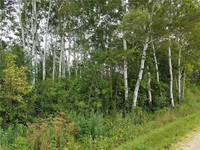 Lot 16 776th Avenue, Spring Valley, WI 54767 (MLS #1528293) :: RE/MAX Affiliates