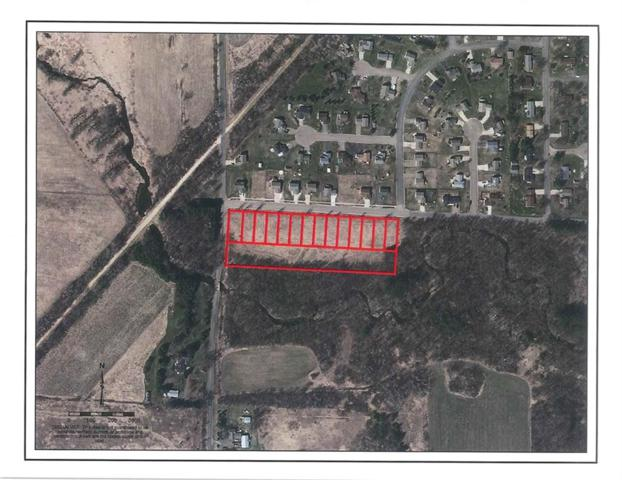 Lots 9-22 S Boundary Road, Woodville, WI 54028 (MLS #1528308) :: The Hergenrother Realty Group