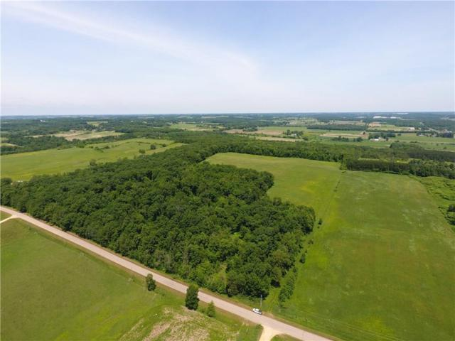 XXX 25th Avenue, Woodville, WI 54028 (MLS #1533803) :: The Hergenrother Realty Group
