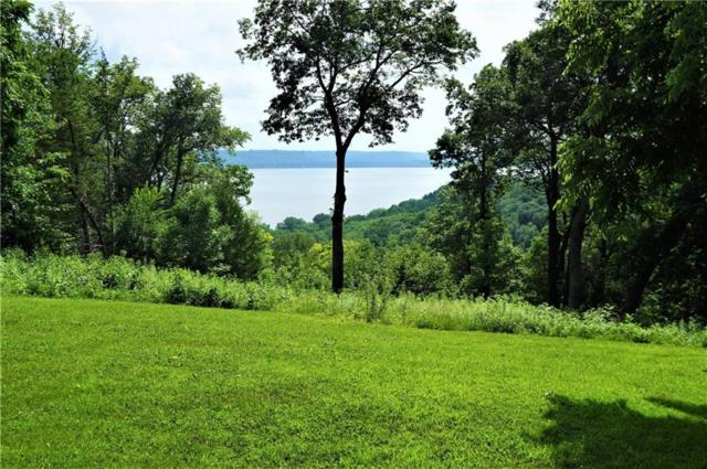4.95 acres 451st St, Maiden Rock, WI 54750 (MLS #1533833) :: The Hergenrother Realty Group