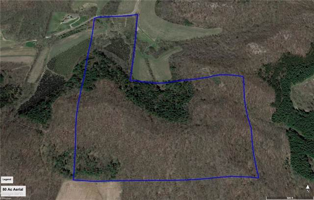 0 Austin Valley Road, Eleva, WI 54738 (MLS #1535986) :: The Hergenrother Realty Group