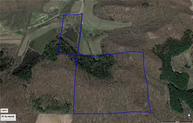 0 Austin Valley Road, Eleva, WI 54738 (MLS #1535990) :: The Hergenrother Realty Group