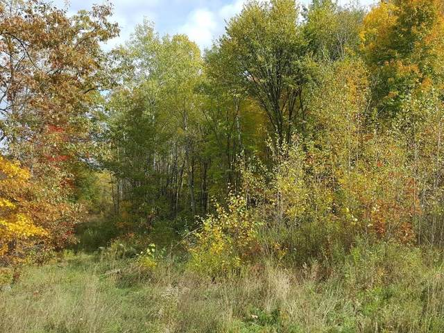 Off Hwy 53  8221, Trego, WI 54888 (MLS #1538139) :: The Hergenrother Realty Group