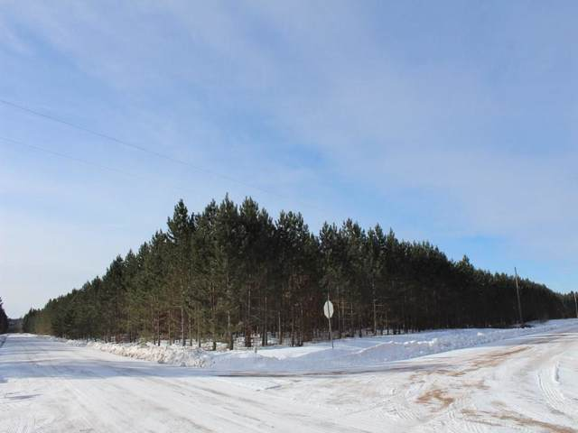 ON Ross  8223-1 Road, Trego, WI 54888 (MLS #1538145) :: The Hergenrother Realty Group