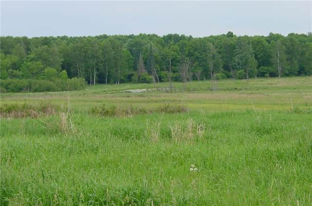 75 Acres on Edming Road, Glen Flora, WI 54526 (MLS #1538423) :: The Hergenrother Realty Group