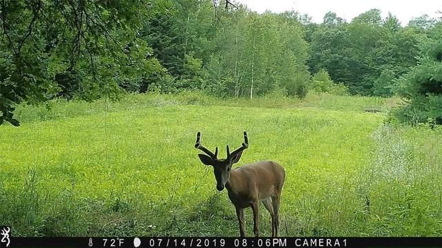 0 Highway 40, Elk Mound, WI 54739 (MLS #1540138) :: RE/MAX Affiliates